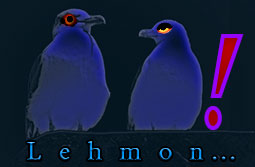 Lehmon Music - logo - Made in Essaouira